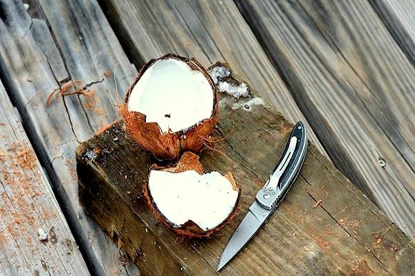 Kokos, Kokosnuss, kokosmilch, rezept, selbstgemacht, vegan